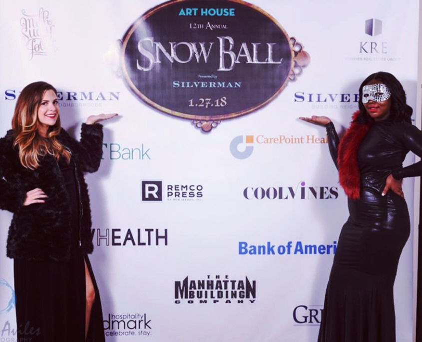 Art House: Snowball Step and Repeat Backdrop